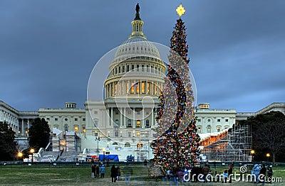 US Capitol Christmas Tree Editorial Stock Photo