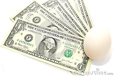US dollar bills with white egg, new birth