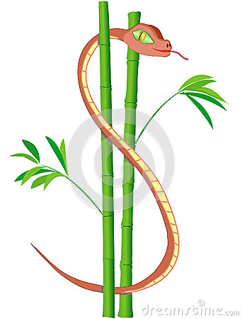 US Dollar snake in bamboo