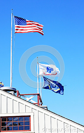 US Flag, Navy and Army Editorial Stock Image