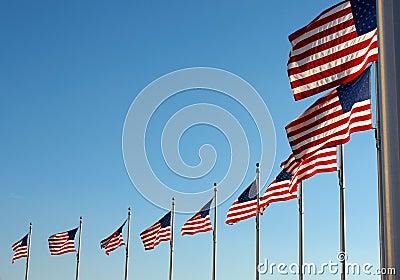 US flags near Washington Monument