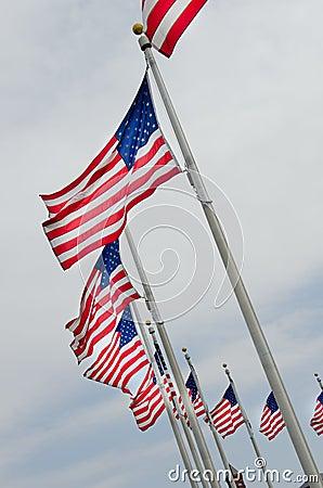 USA flags on flagpoles