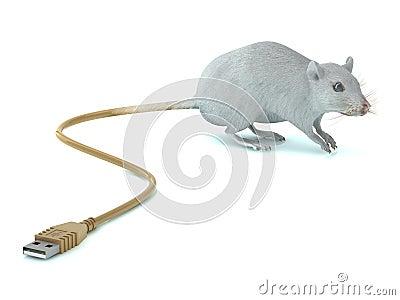 与USB尾标的鼠标