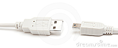 Usb and mini-usb cable isolated.