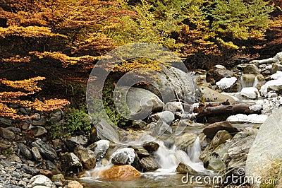 Ushuaia creek