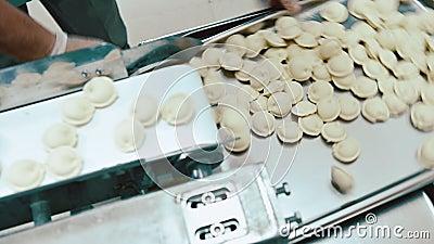 Usine de proc?d? de fabrication de Pelmeni faite main banque de vidéos