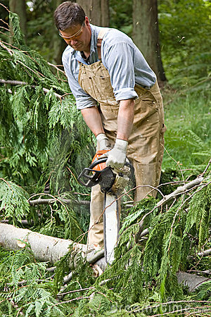 Free Using Chainsaw Royalty Free Stock Photos - 10156828