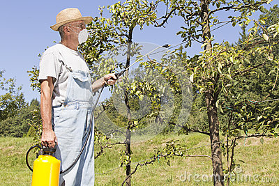 Using chemicals in the garden
