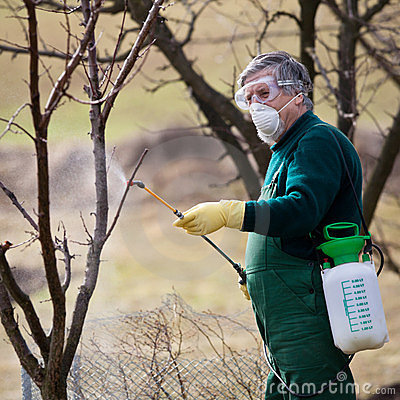 Free Using Chemicals In The Garden/orchard Royalty Free Stock Image - 24095916