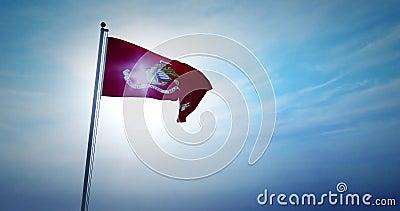 Usmc flagowcy reprezentuje korpus marines stanów zjednoczonych - 4k zdjęcie wideo