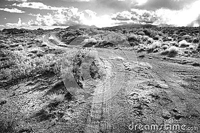 Utah, 2016 Bw (13) Free Public Domain Cc0 Image