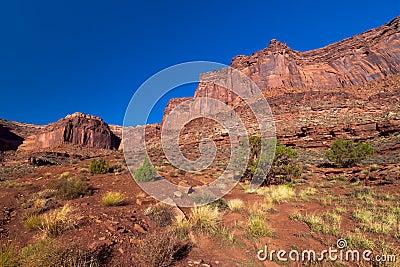 Utah-Canyonlands National Park- White Rim Road