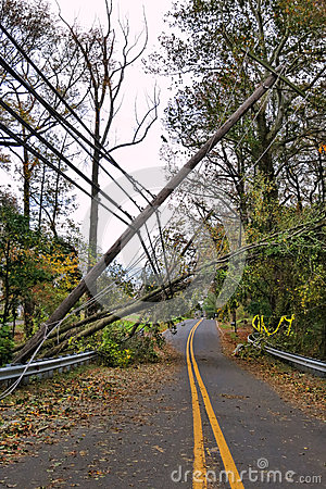 Free Utility Power Line And Pole Toppled By Fallen Tree Stock Images - 27431484