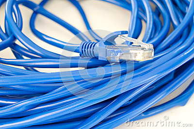 UTP network cable