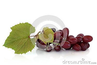 Uvas rojas en la vid