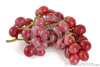 Uvas rojas jugosas maduras con las bayas grandes