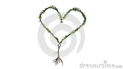 Växande träd som bildar hjärta (färgversionen)