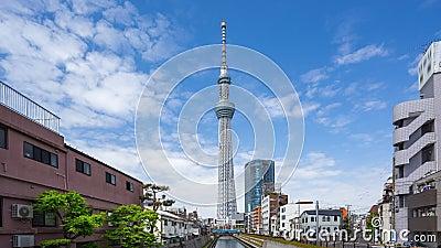 Vídeo del lapso de tiempo del árbol del cielo de Tokio con el cielo nublado en timelapse de Tokio, Japón almacen de video