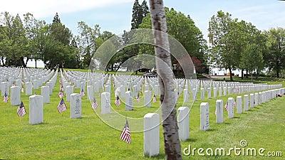 V A Punto nacional Oregon de Cementerio-Eagle almacen de video