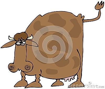 Vaca com uma cauda levantada
