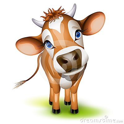 Vaca pequena de Jersey