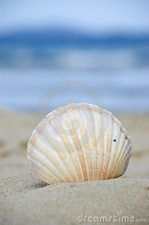 Vacation At The Beach Royalty Free Stock Image - Image: 4074646