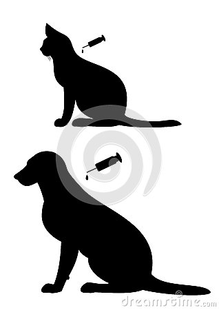 Vaccination of  dogs and cats