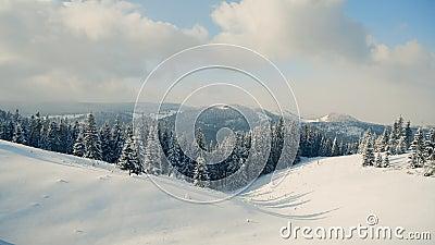 Vackert panorama av snöberg med skog täckt av snö arkivfilmer