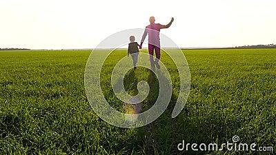 Vader en zoon lopen over een groene weide, houden handen vast en verbeelden de vlucht van het vliegtuig Silhouette van een gelukk stock videobeelden