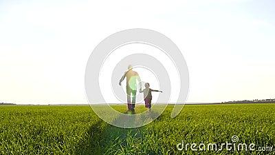 Vader en zoon rijden over een groene weide, houden handen vast Silhouette van een gelukkig gezin bij zonsondergang stock footage