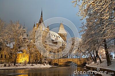 Vajdahunyad castle at night Stock Photo