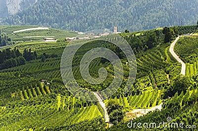 Val di Non (Trento)