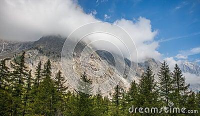 Val Veny, Italy - Forest Tops and Italian Alps