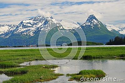 Valdez Mountains