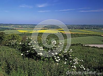 Vale of aylesbury