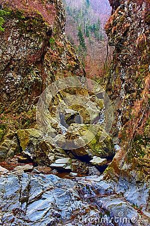Valea lui Stan gorge, Romania