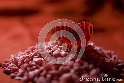 Valentin - mountain of love