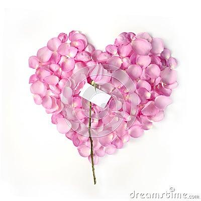 Free Valentine Blank Note Royalty Free Stock Photos - 5709038
