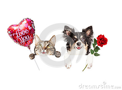 Valentine Cat And Dog Hanging Over Sign Stock Photo