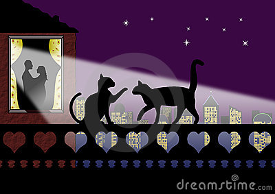 Valentine cats and couple in Love