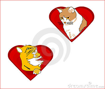 Valentine hearts with cats