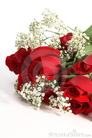 Free Valentine Roses Royalty Free Stock Photo - 1648175