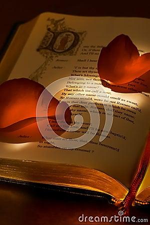 Valentine s book