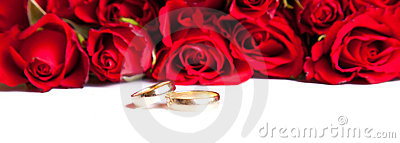 Valentine s day roses and wedding rings isolated