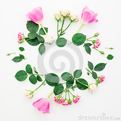Valentines background. Floral frame with tulip flowers, roses and petals isolated on white background. Flat lay, Top view. Stock Photo