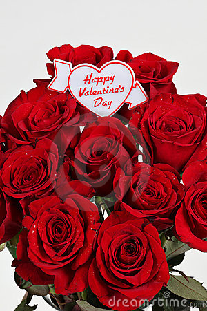 Free Valentines Day Roses Stock Images - 13081324