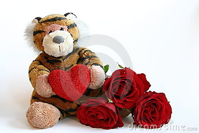 Valentines tiger
