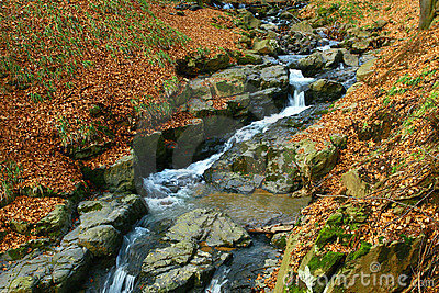Valley cut trough stone - autumn forest.