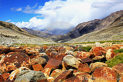 Valley with rock, stones, moss in Himalayas.