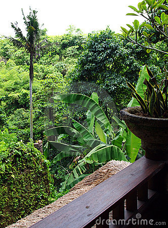 Valley view from Bali resort balcony